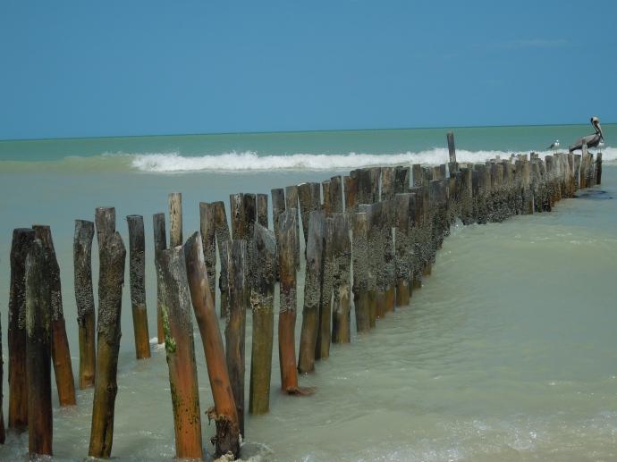 Lazy Beach Day in Progreso, Mexico