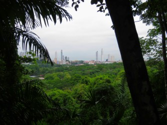 View of Panama City skyline from Metropolitain Park