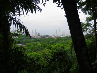 View of Panama City skyline from Metropolitain Park